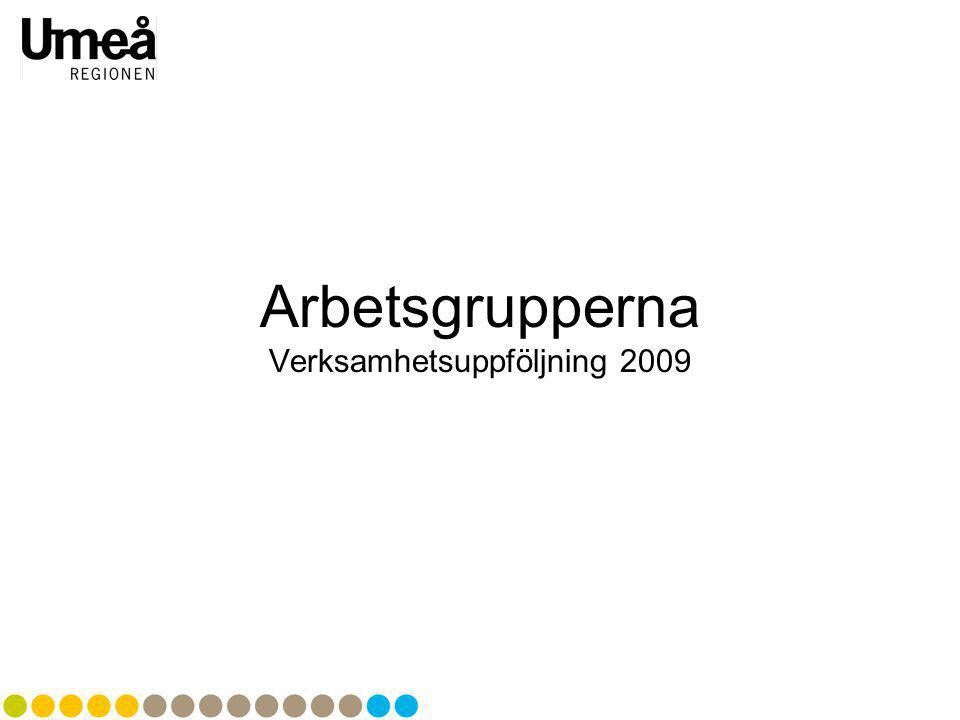 Verksamhetsuppföljning 2009