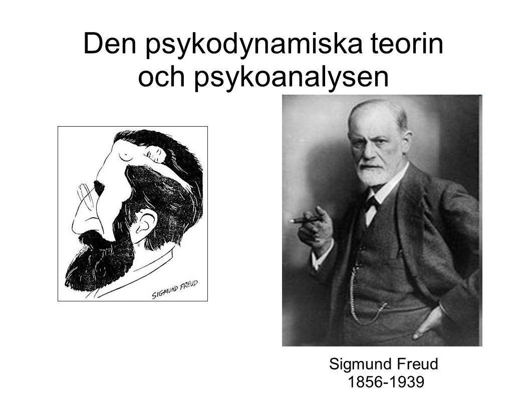 Den psykodynamiska teorin och psykoanalysen