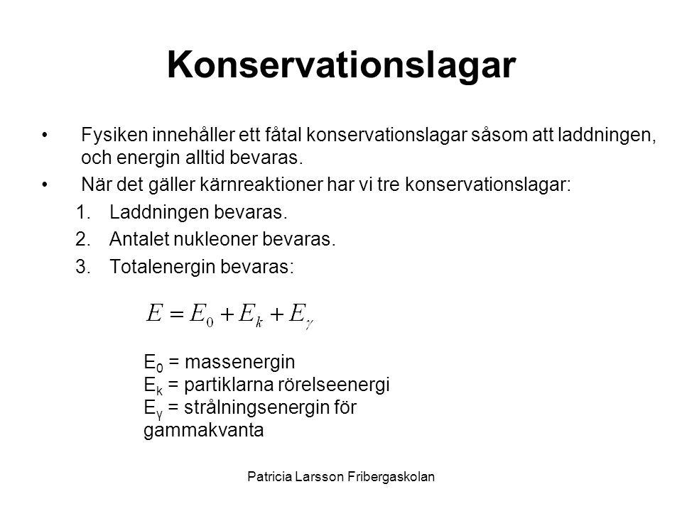 Patricia Larsson Fribergaskolan