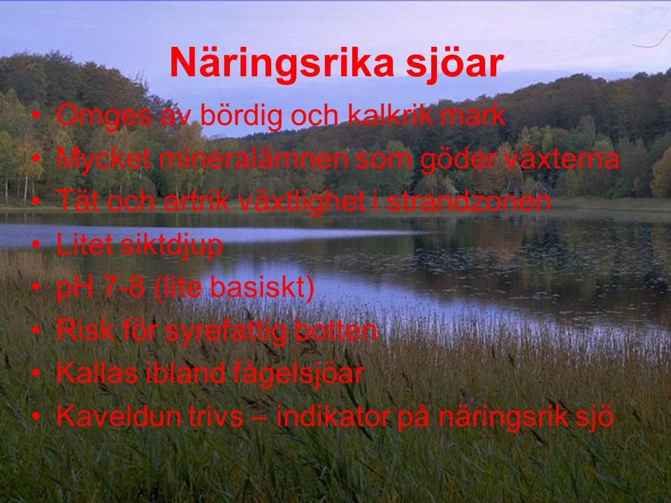 Näringsrika sjöar Omges av bördig och kalkrik mark