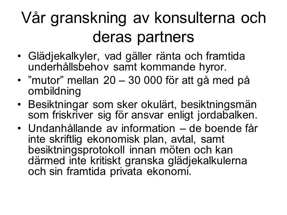 Vår granskning av konsulterna och deras partners