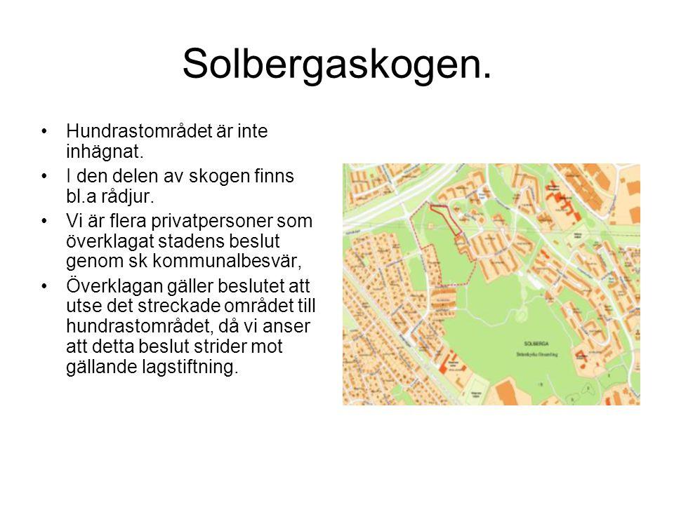 Solbergaskogen. Hundrastområdet är inte inhägnat.