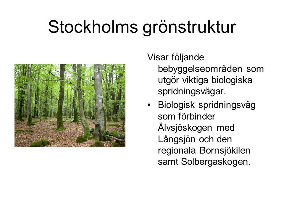 Stockholms grönstruktur