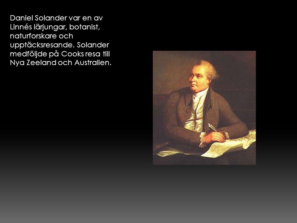 Daniel Solander var en av Linnés lärjungar, botanist, naturforskare och upptäcksresande.