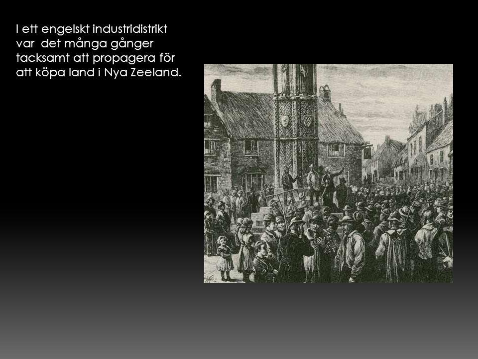 I ett engelskt industridistrikt var det många gånger tacksamt att propagera för att köpa land i Nya Zeeland.
