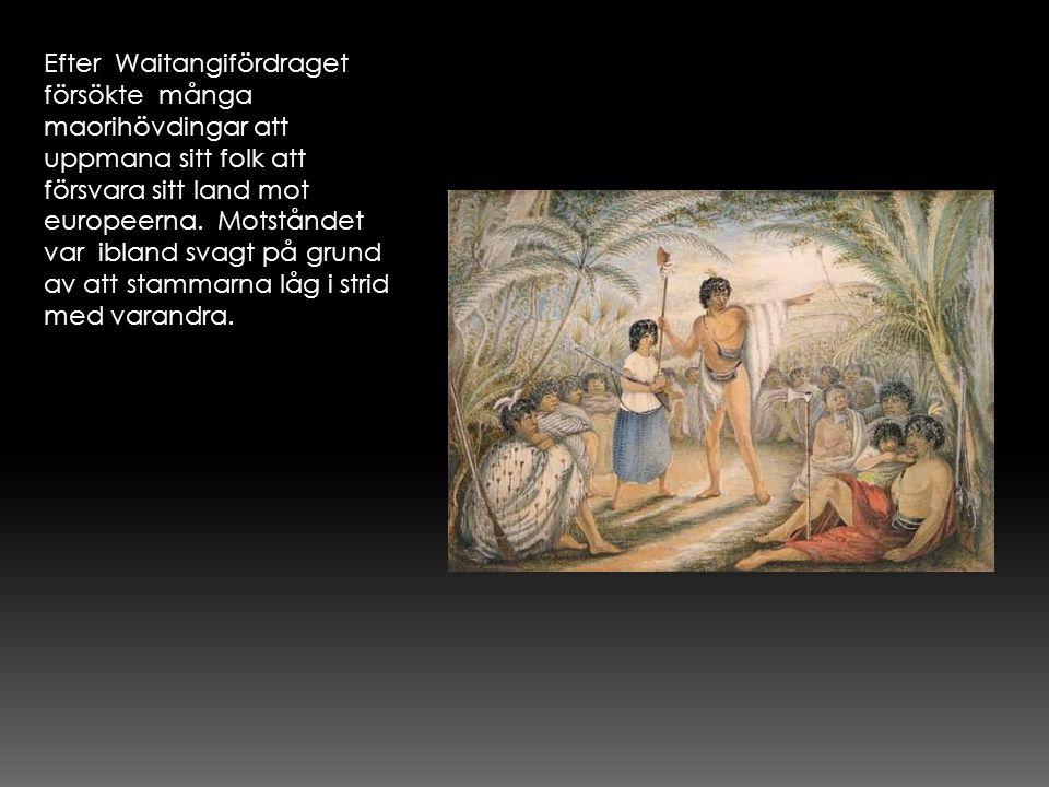 Efter Waitangifördraget försökte många maorihövdingar att uppmana sitt folk att försvara sitt land mot europeerna.