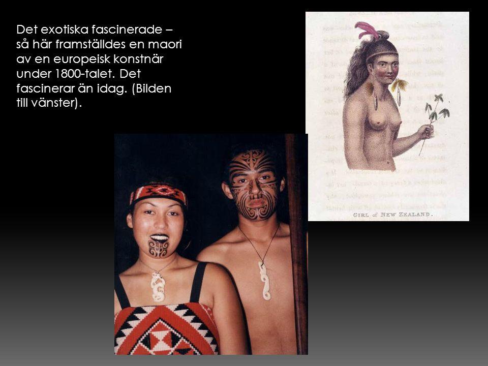 Det exotiska fascinerade – så här framställdes en maori av en europeisk konstnär under 1800-talet.
