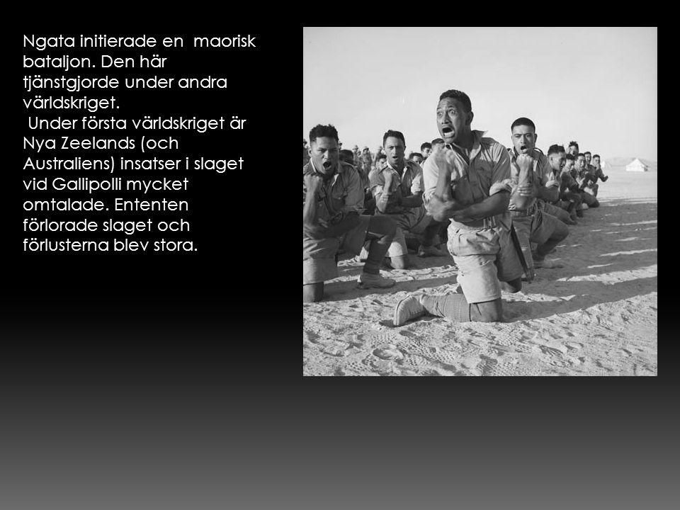 Ngata initierade en maorisk bataljon