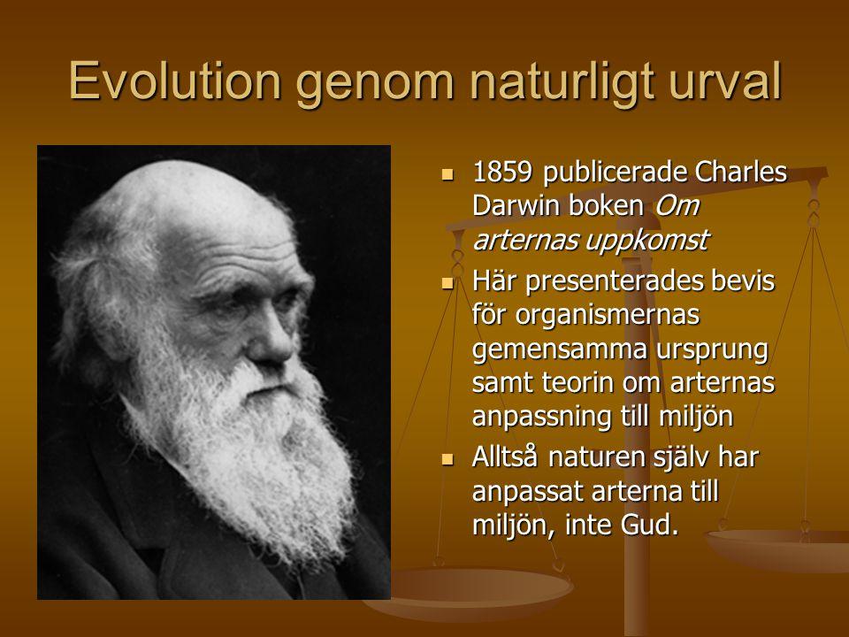 Evolution genom naturligt urval