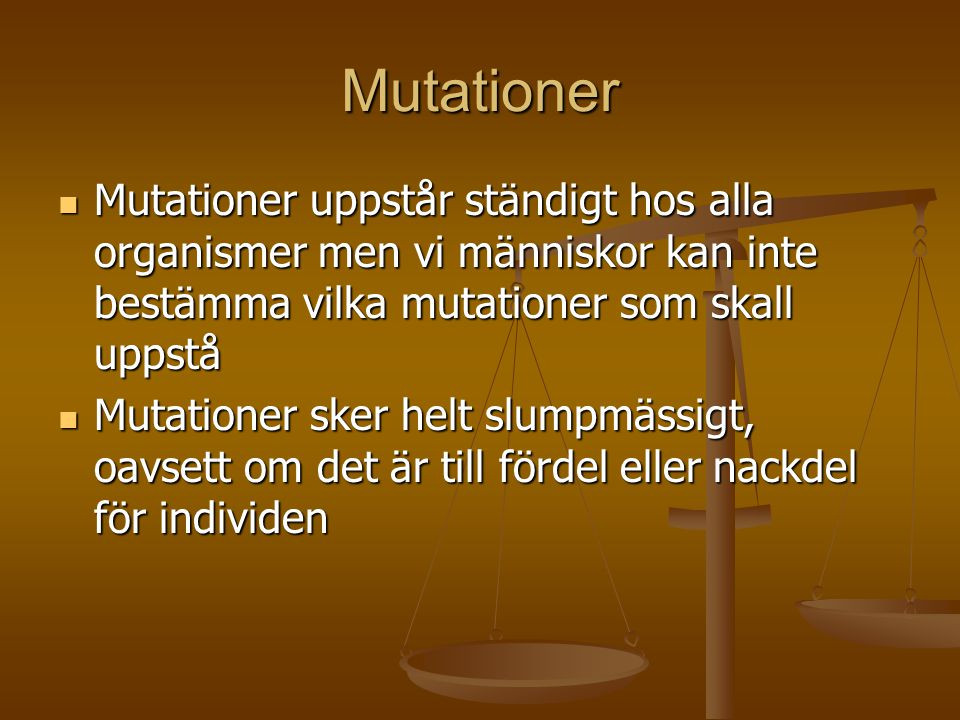 Mutationer Mutationer uppstår ständigt hos alla organismer men vi människor kan inte bestämma vilka mutationer som skall uppstå.