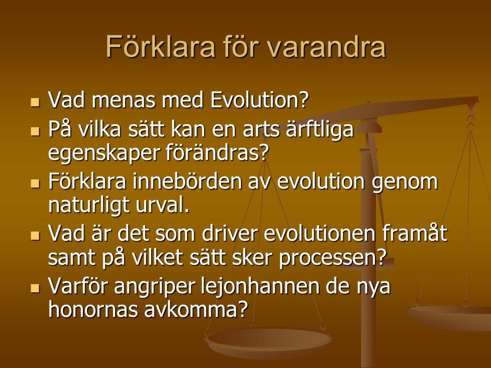 Förklara för varandra Vad menas med Evolution