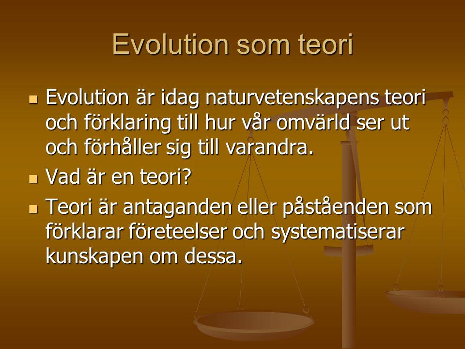 Evolution som teori Evolution är idag naturvetenskapens teori och förklaring till hur vår omvärld ser ut och förhåller sig till varandra.