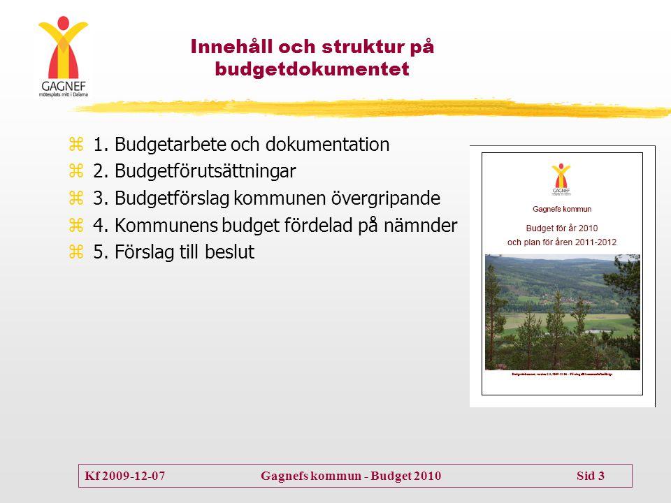 Innehåll och struktur på budgetdokumentet