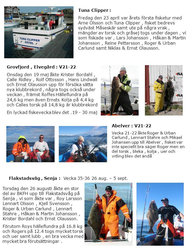 Grovfjord , Elvegård : V21-22