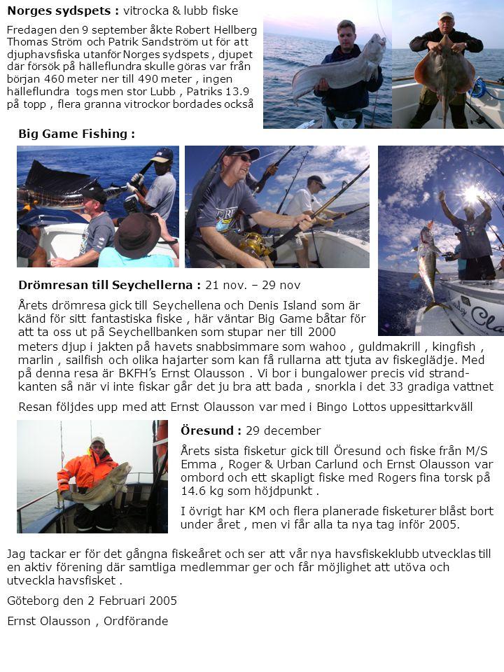 Norges sydspets : vitrocka & lubb fiske