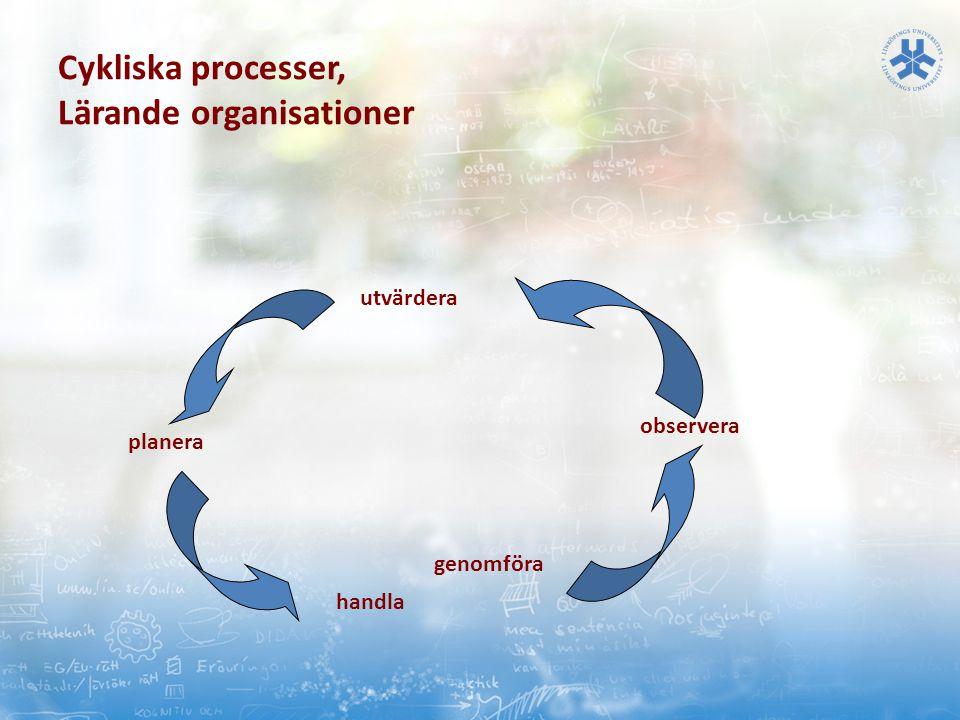 Cykliska processer, Lärande organisationer