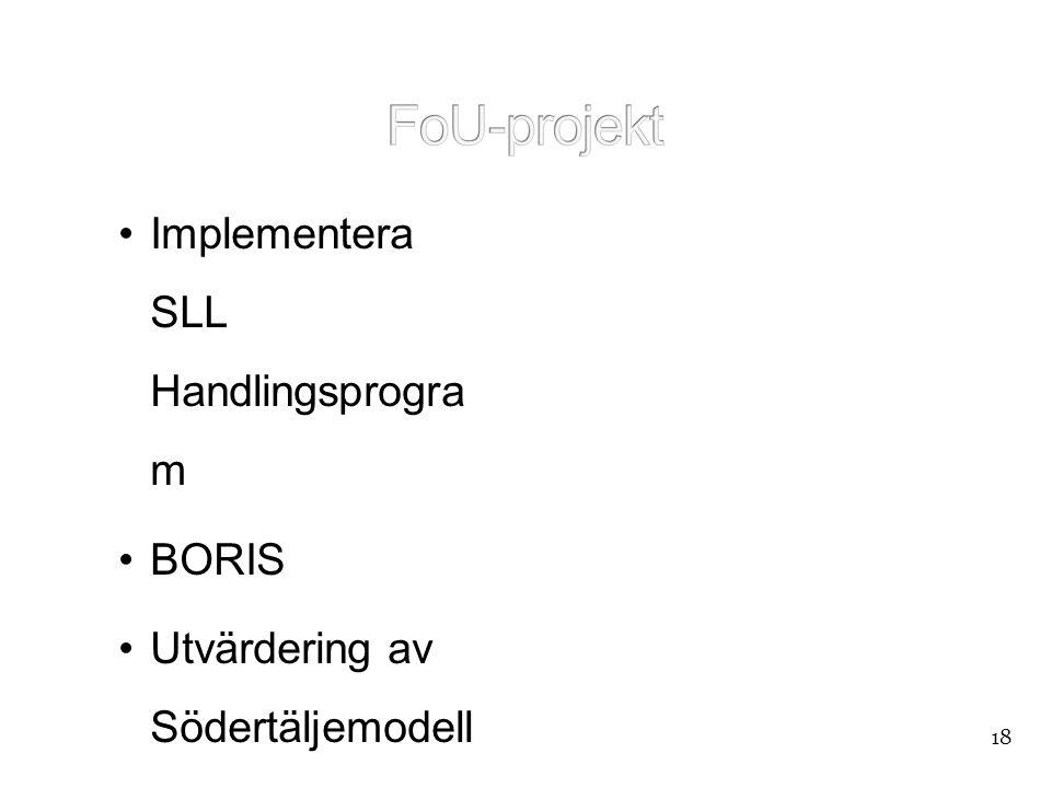 FoU-projekt Implementera SLL Handlingsprogram BORIS