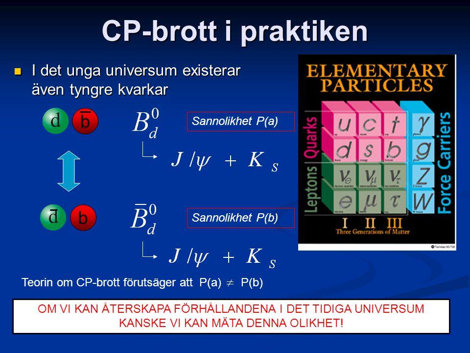 CP-brott i praktiken b b