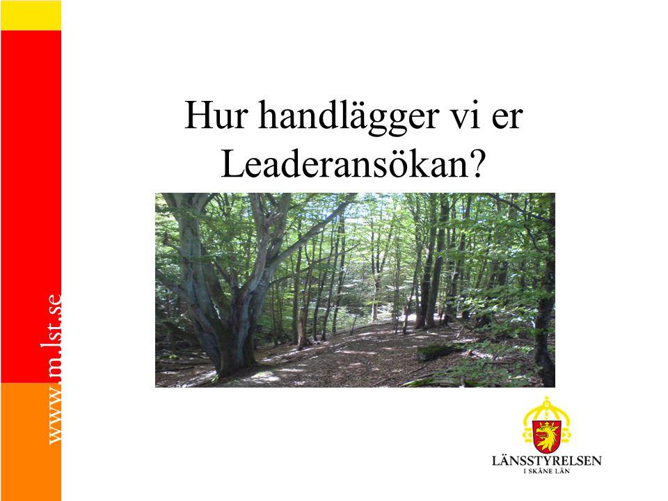 Hur handlägger vi er Leaderansökan