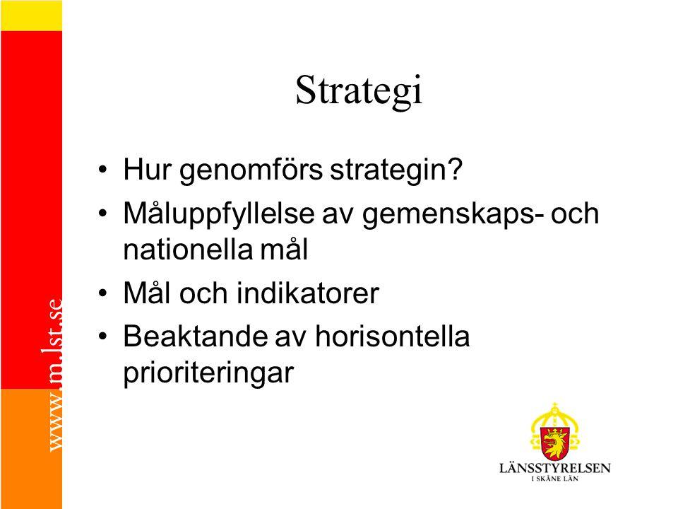 Strategi Hur genomförs strategin