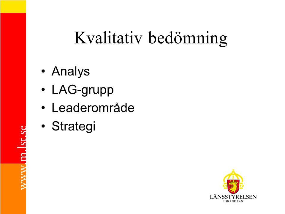 Kvalitativ bedömning Analys LAG-grupp Leaderområde Strategi