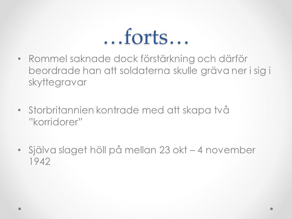 …forts… Rommel saknade dock förstärkning och därför beordrade han att soldaterna skulle gräva ner i sig i skyttegravar.