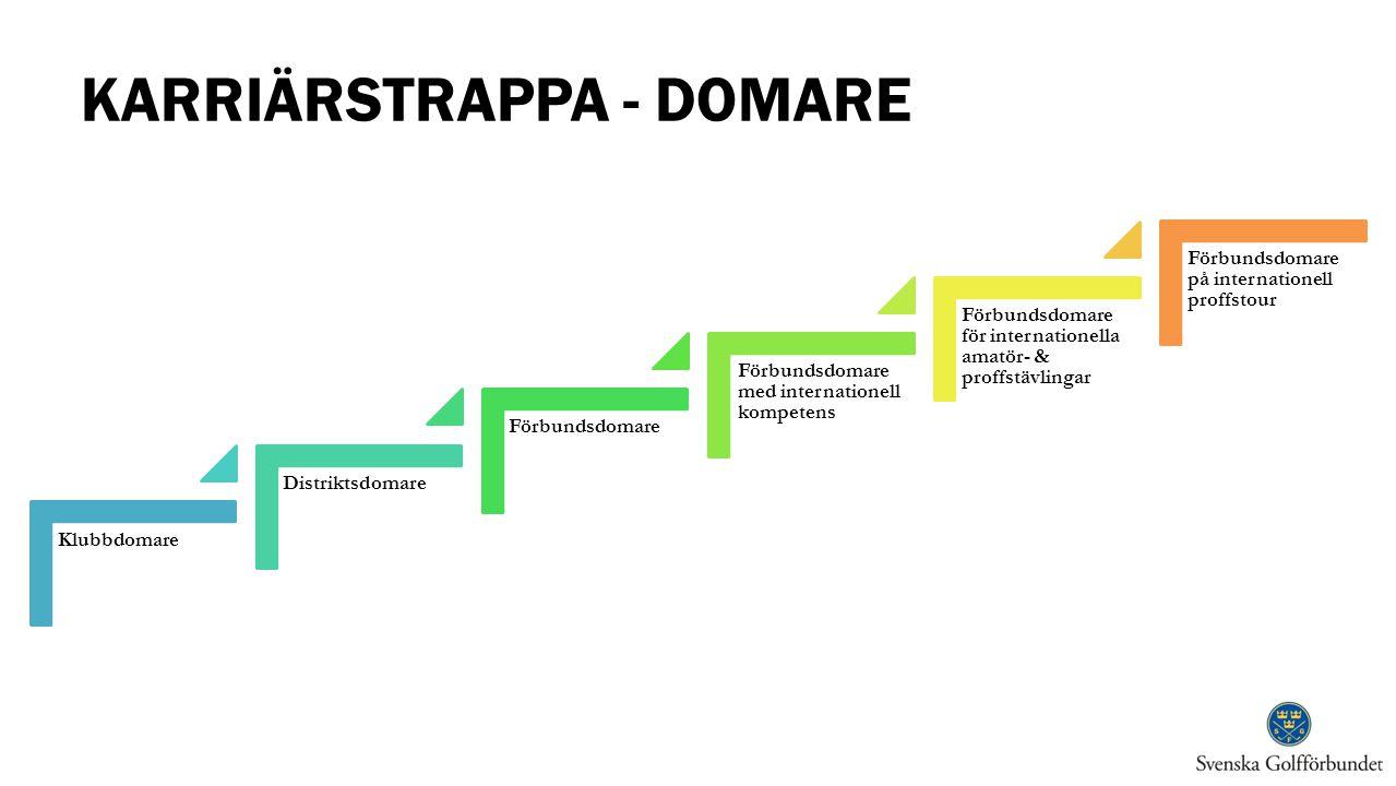 KARRIÄRSTRAPPA - DOMARE