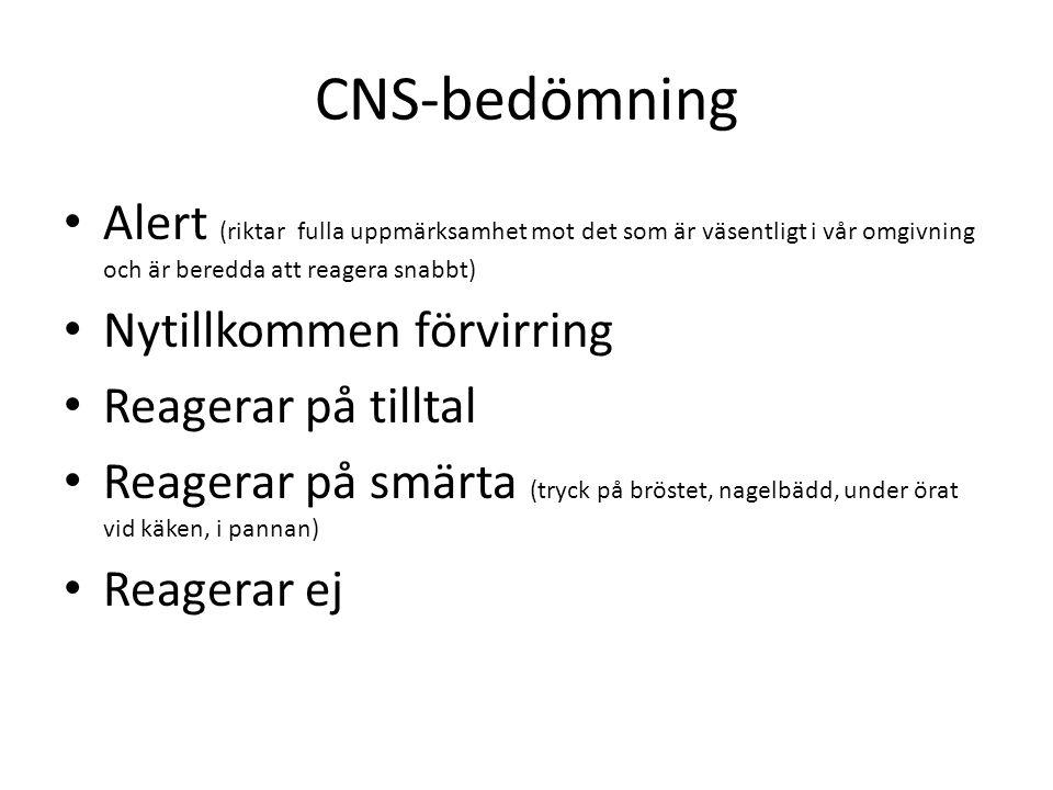 CNS-bedömning Alert (riktar fulla uppmärksamhet mot det som är väsentligt i vår omgivning och är beredda att reagera snabbt)