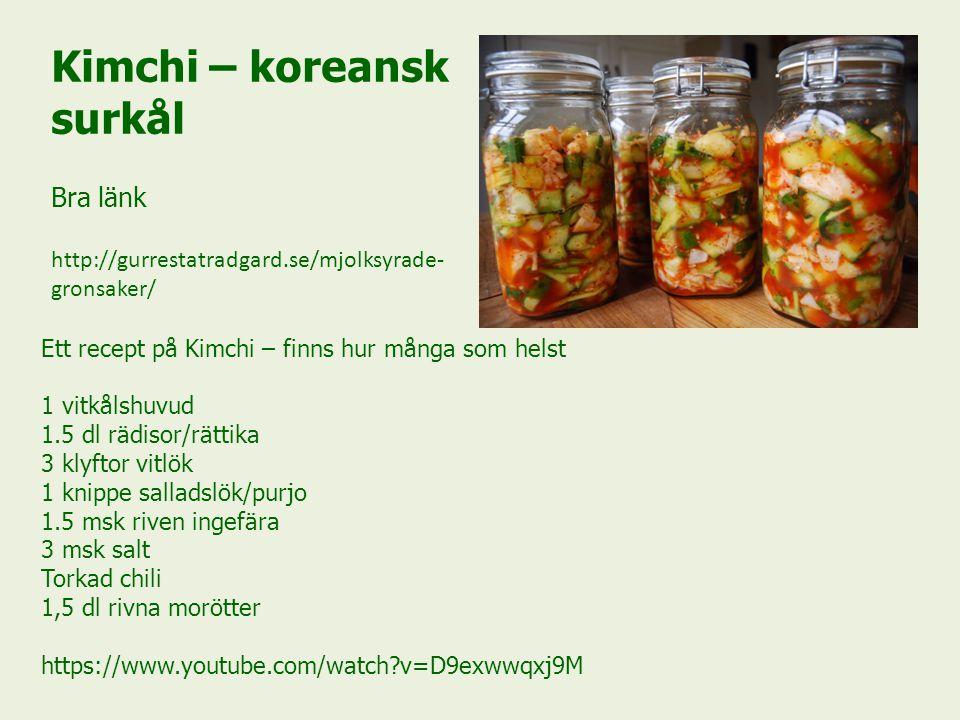 Kimchi – koreansk surkål Bra länk