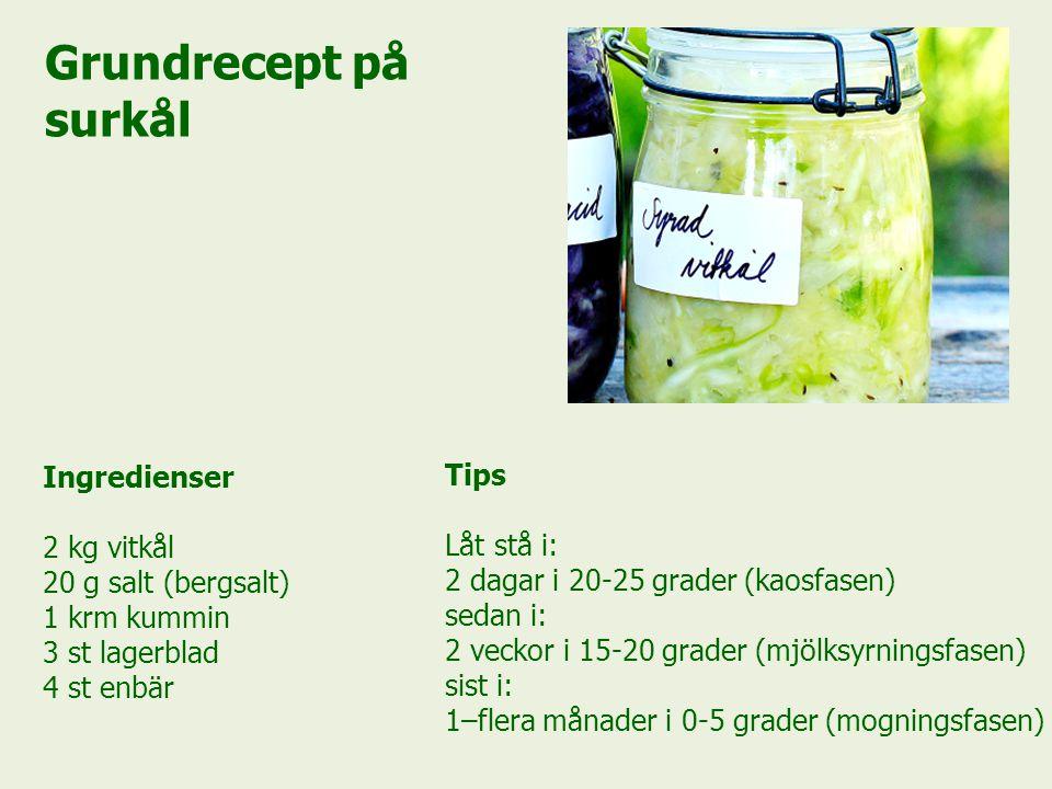 Grundrecept på surkål Ingredienser Tips