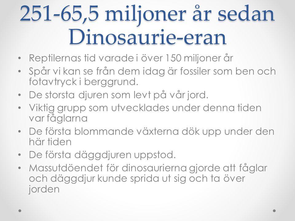 251-65,5 miljoner år sedan Dinosaurie-eran