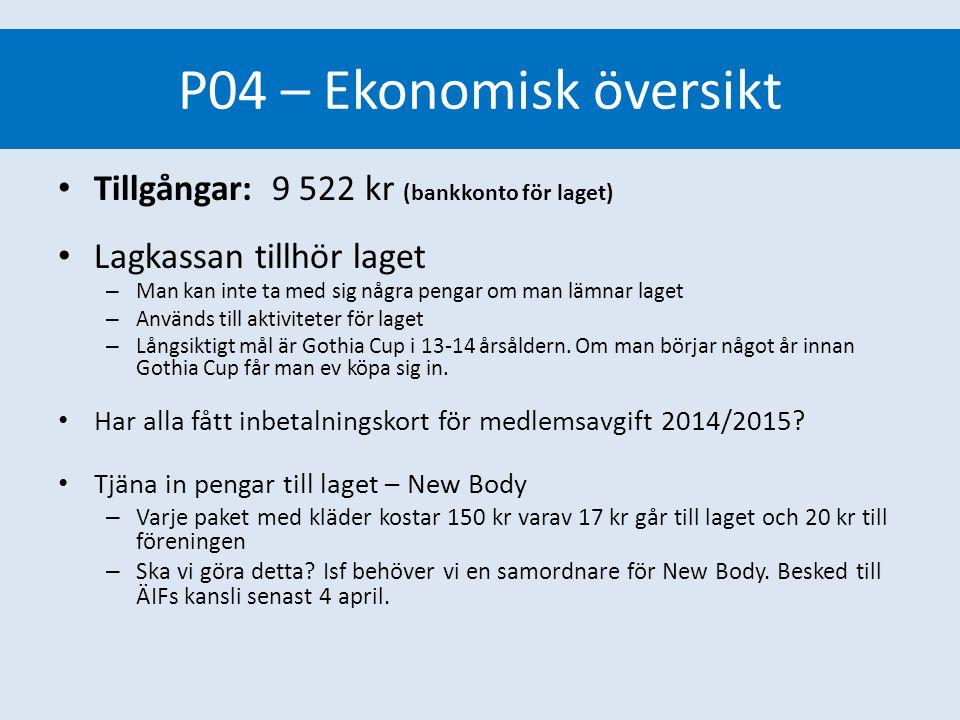 Ekonomisk översikt P04 lagkassa