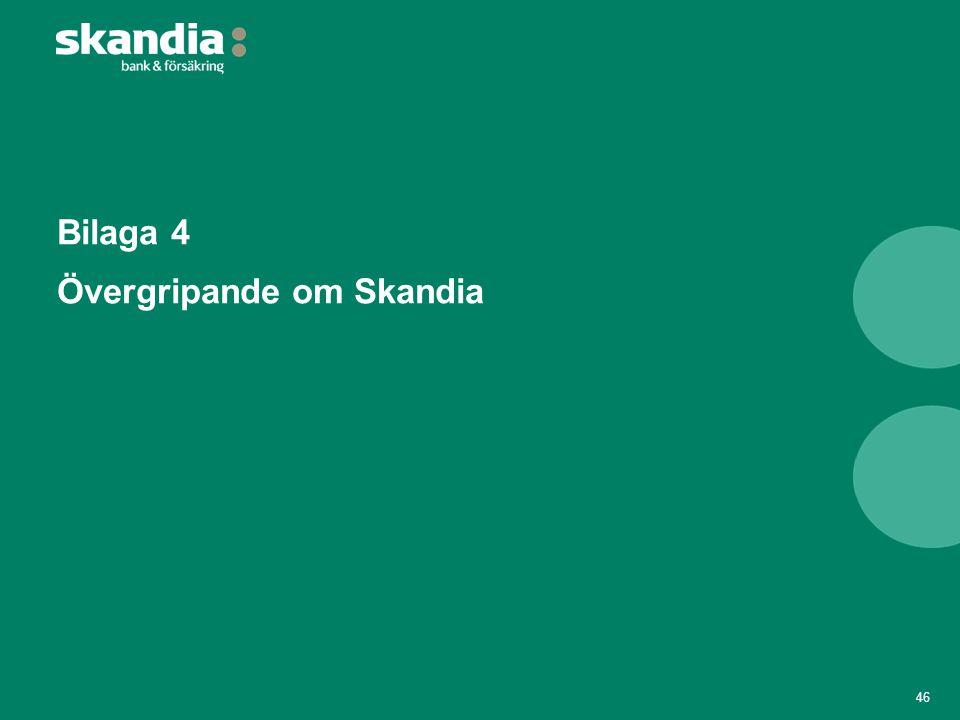 Bilaga 4 Övergripande om Skandia
