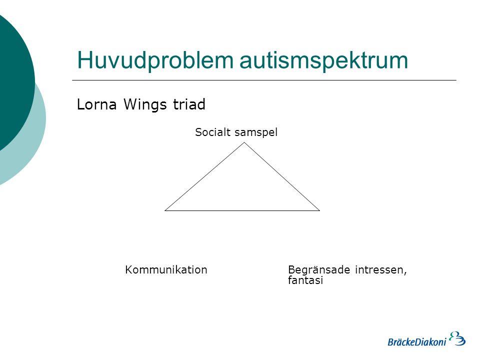 Huvudproblem autismspektrum