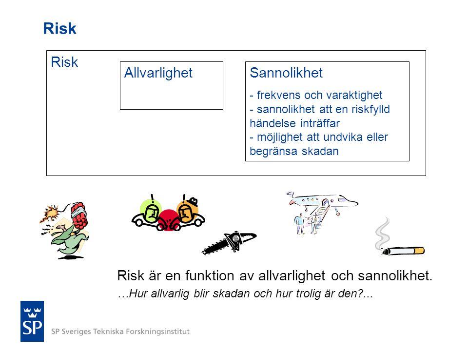 Risk Risk Allvarlighet Sannolikhet