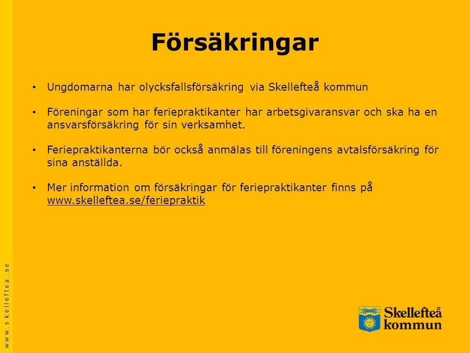 Försäkringar Ungdomarna har olycksfallsförsäkring via Skellefteå kommun.