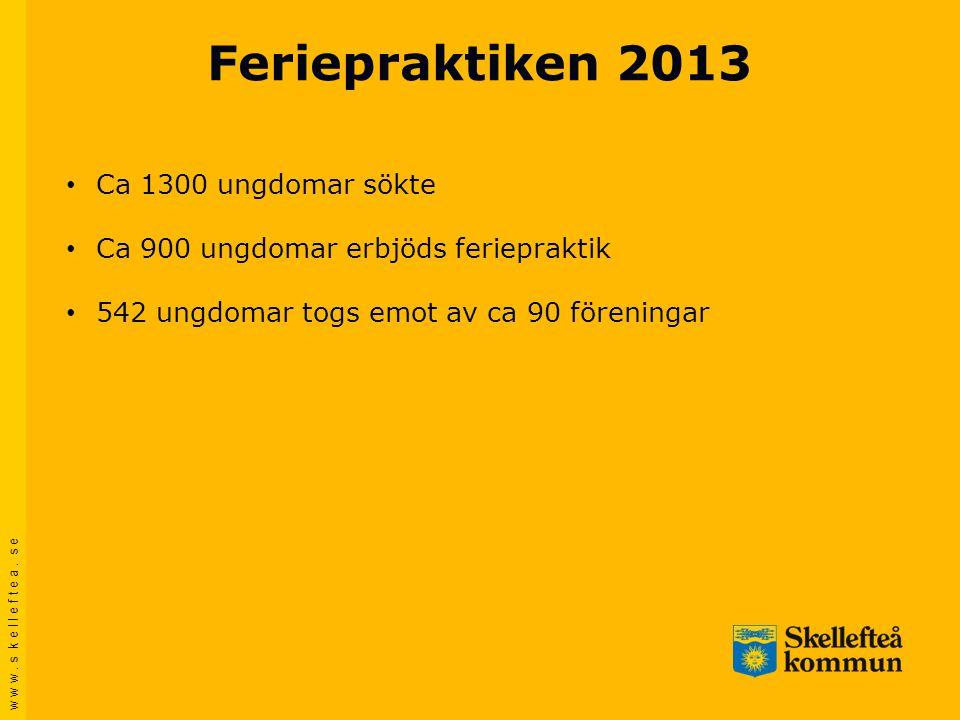 Feriepraktiken 2013 Ca 1300 ungdomar sökte