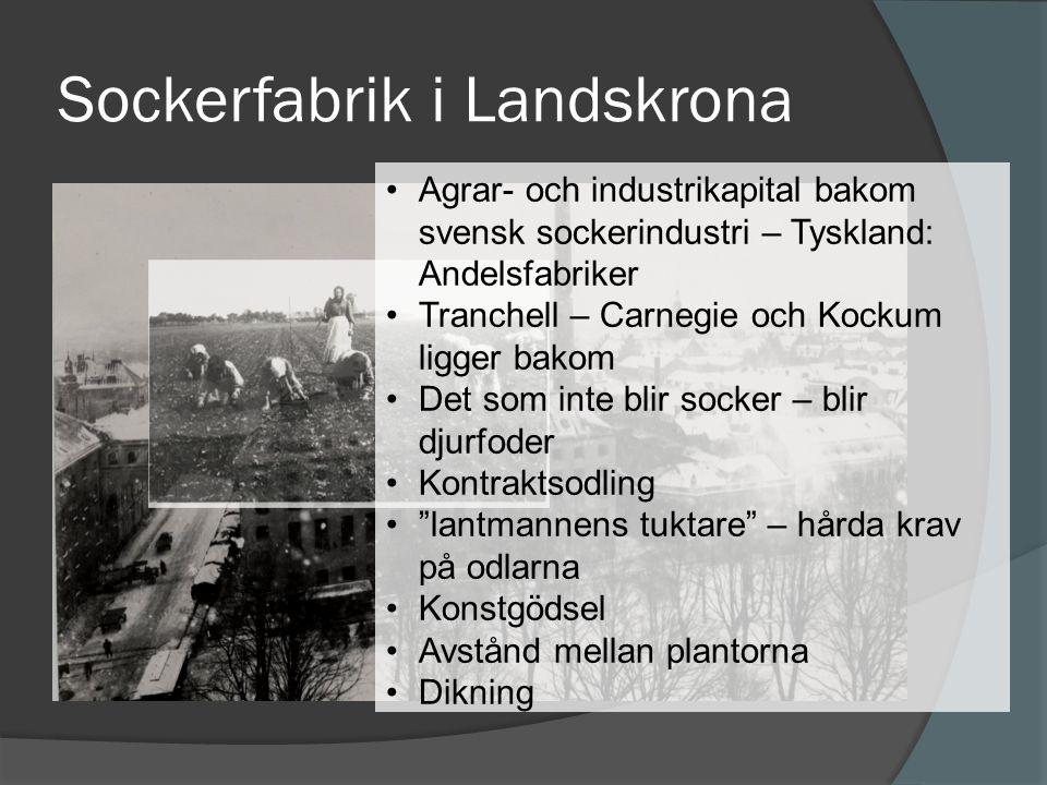 Sockerfabrik i Landskrona