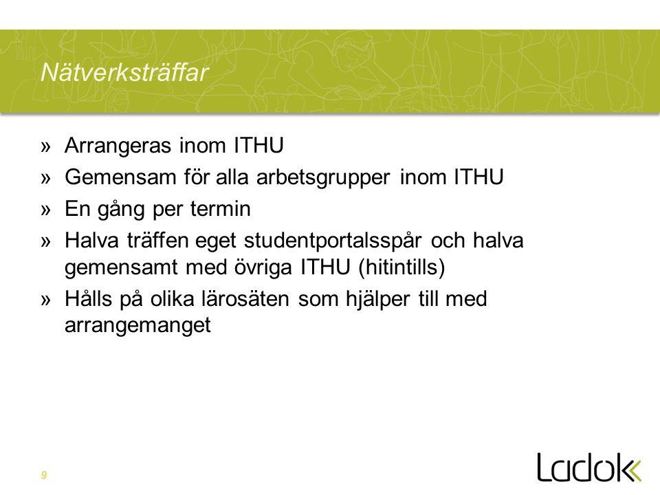 Nätverksträffar Arrangeras inom ITHU