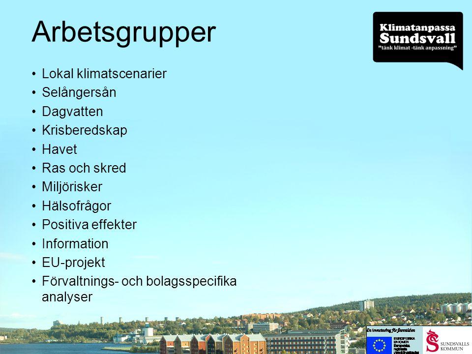 Arbetsgrupper Lokal klimatscenarier Selångersån Dagvatten