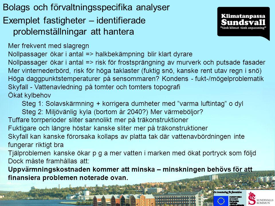 Bolags och förvaltningsspecifika analyser