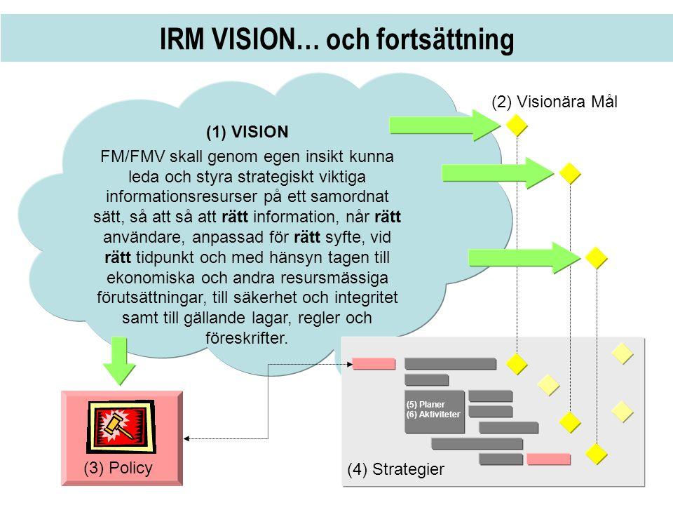 IRM VISION… och fortsättning