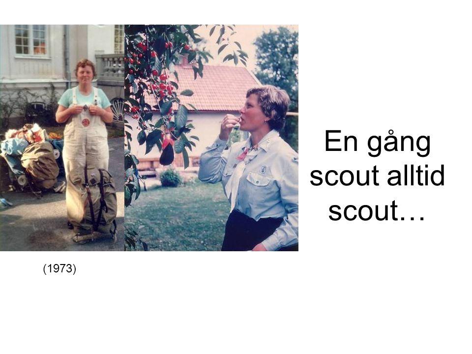 En gång scout alltid scout…