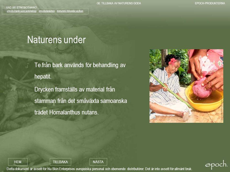 etnobotanik som vetenskap - etnobotanisten - naturens läkande verkan