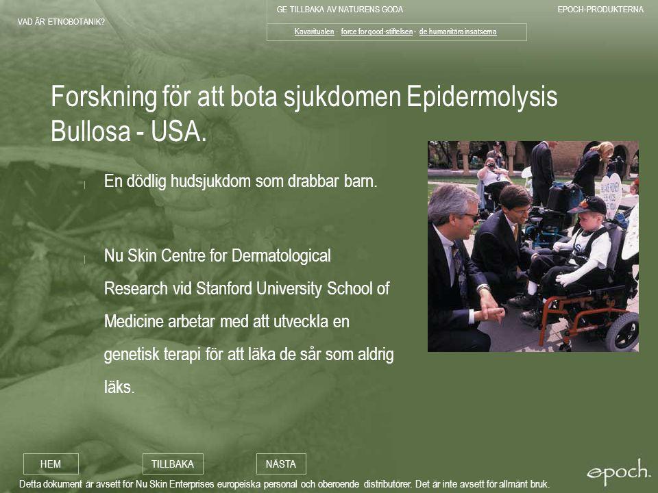 Forskning för att bota sjukdomen Epidermolysis Bullosa - USA.