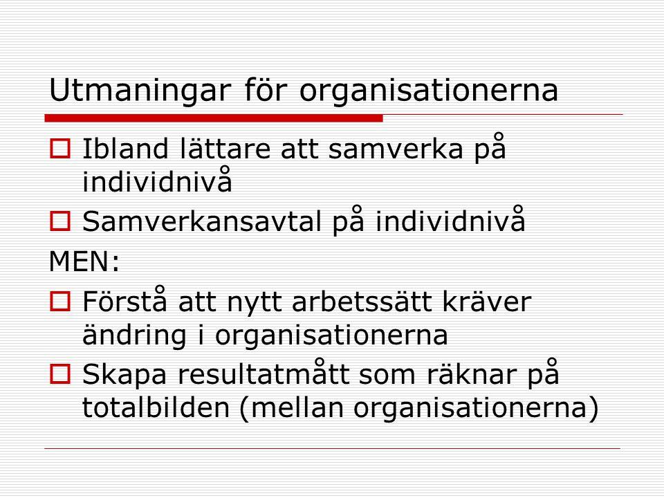 Utmaningar för organisationerna