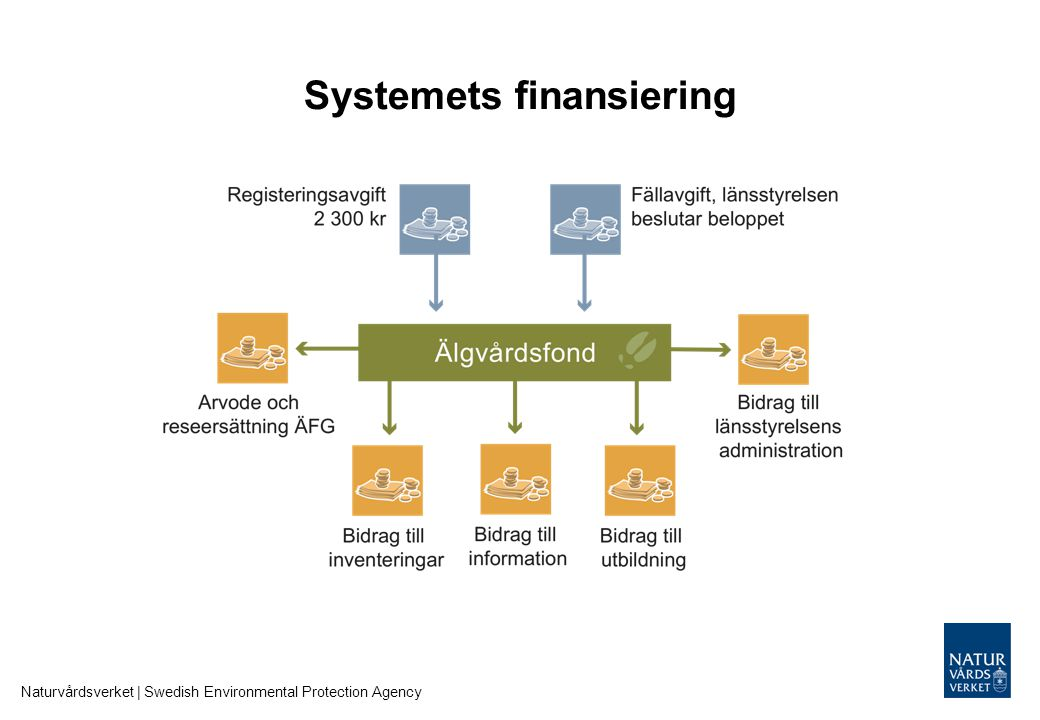 Systemets finansiering
