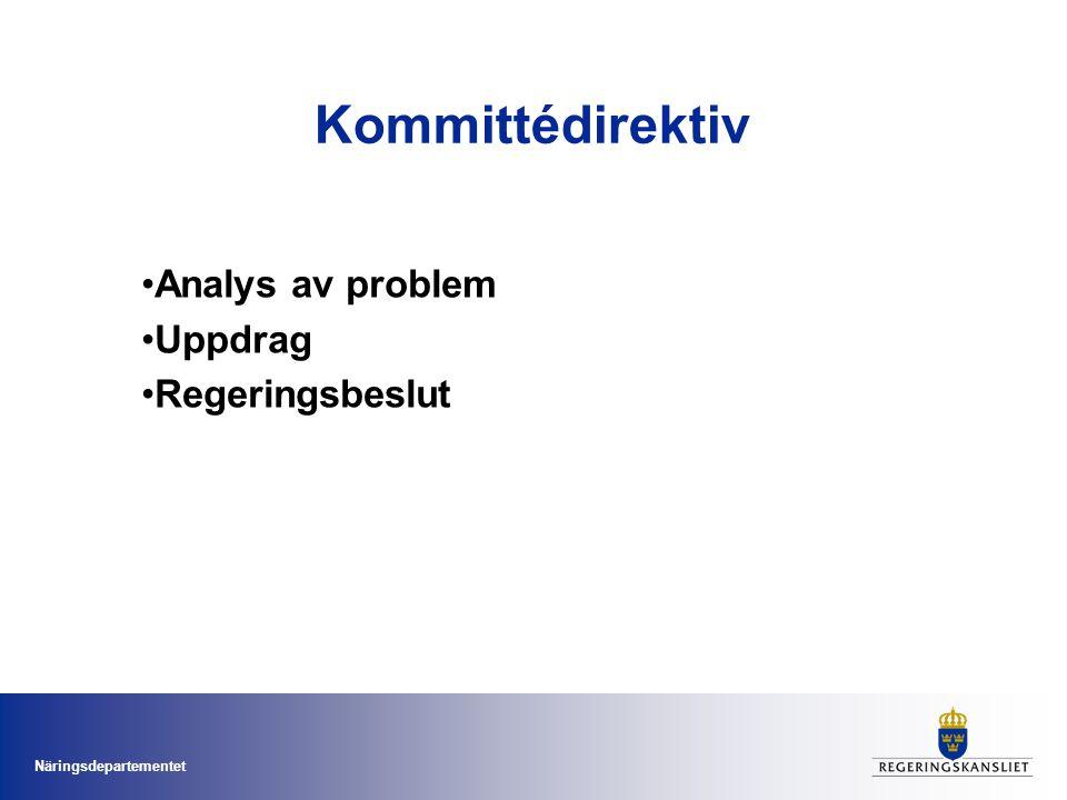 Analys av problem Uppdrag Regeringsbeslut