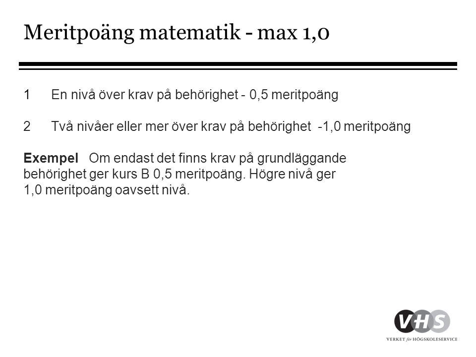Meritpoäng matematik - max 1,0