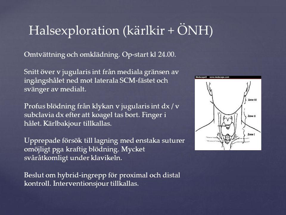 Halsexploration (kärlkir + ÖNH)